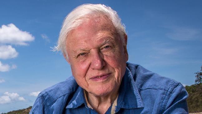 """David Attenborough advierte """"última oportunidad"""" para salvar el planeta"""