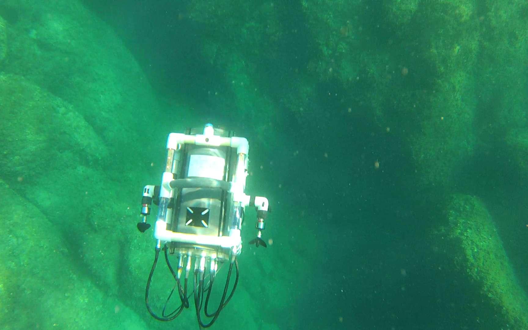 Pour la modélisation des reliefs sous-marins, l'école a réalisé ses propres algorithmes inspirés de l'aérien et adaptés au monde sous-marin. © EPITA