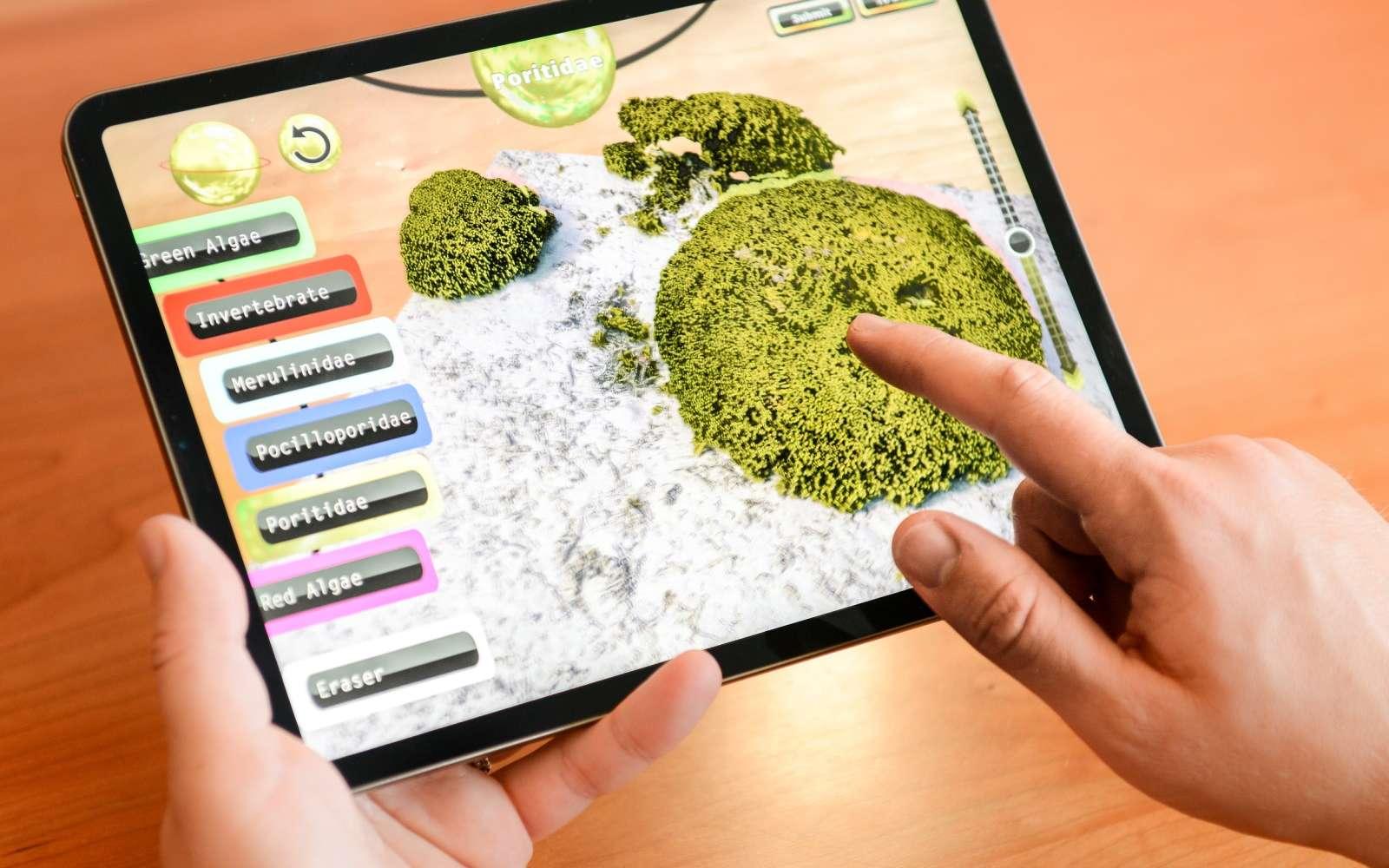 Avec NeMO-Net, les joueurs pourront apprendre à identifier et classifier les coraux. © Nasa