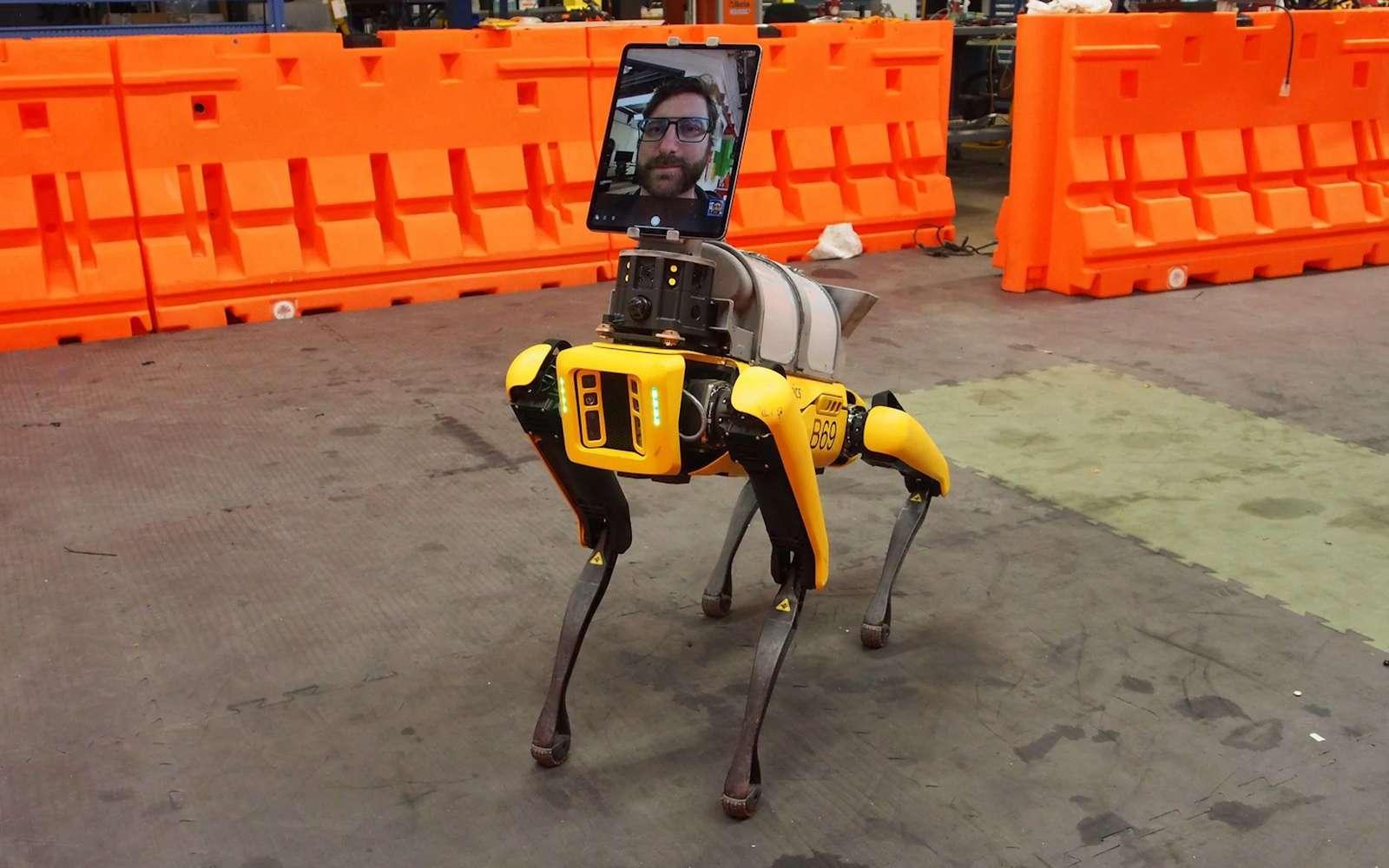 Le robot-chien Spot de Boston Dynamics est devenu docteur. © Boston Dynamics