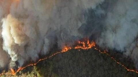 Los bomberos australianos necesitan cambiar de táctica