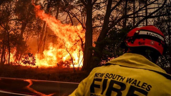 Victoria, NSW recibirá informes de consultas independientes sobre incendios forestales