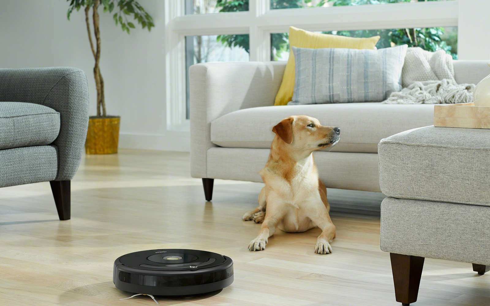 iRobot souhaite que ses aspirateurs-robots soient plus autonomes dans la pièce. © iRobot