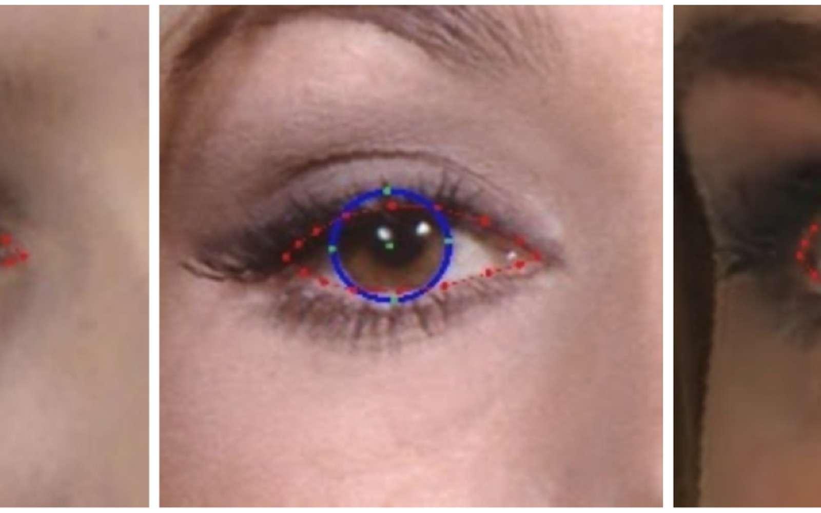 C'est en plaçant des repères sur l'iris que l'IA parvient à déterminer à la fois sa position et également l'éloignement face au capteur. © Google