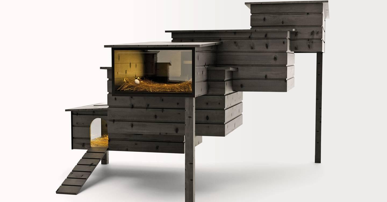 Gin de hormigas y gallineros de diseño. Es hora de mejorar tu juego de comida y bebida