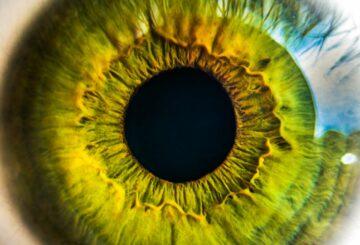 Les technologies de suivi du regard révèlent beaucoup d'informations sur la vie privée. © stock.tookapic.com via pixels.com, DP