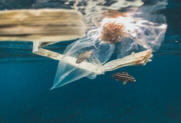 Amazon genera millones de kilos de residuos plásticos
