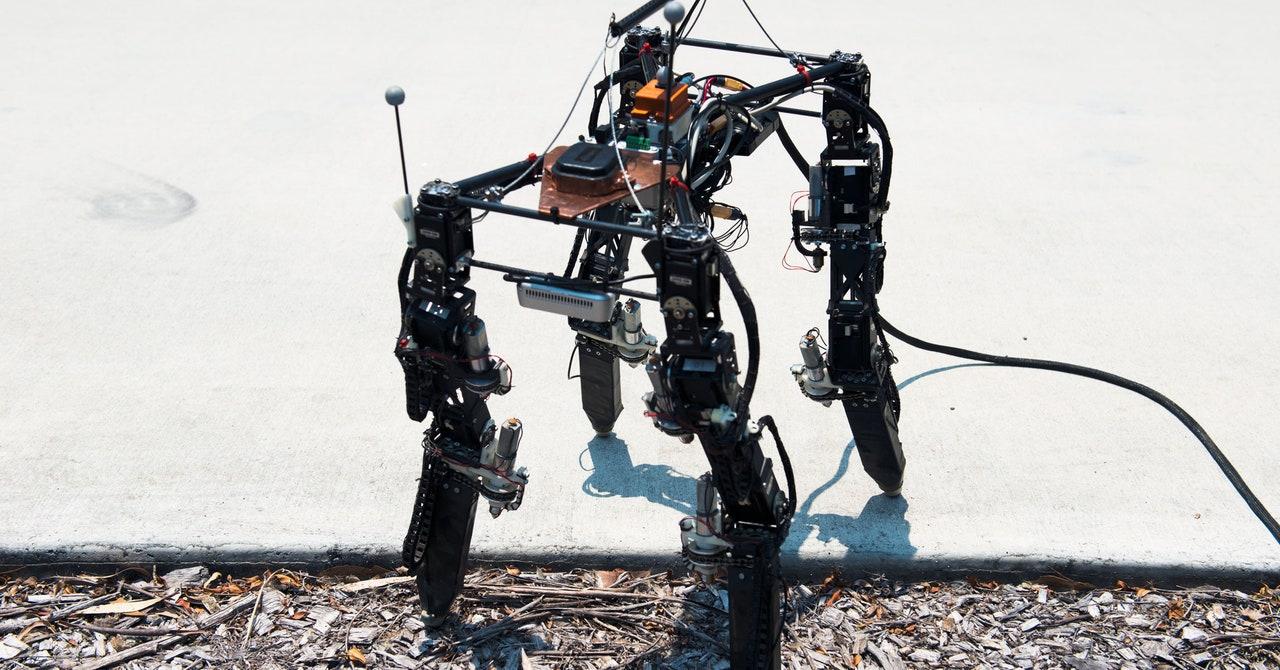 Observa a un robot que cambia de forma merodeando por el mundo grande y malo