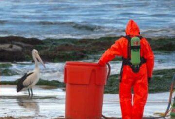Operación de materiales peligrosos en la playa de Newcastle después de que un misterioso contenedor marcado con 'ácido' se lave en tierra
