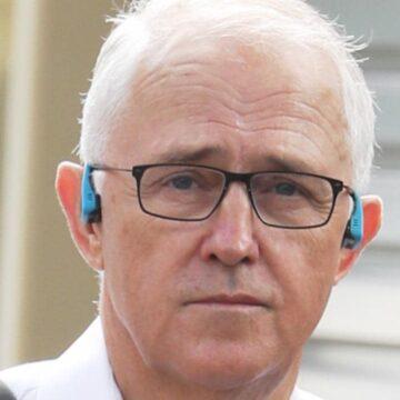 El candidato de los NSW Nationals Upper Hunter, David Layzell, golpea a Malcolm Turnbull por los comentarios sobre el carbón