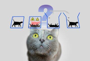 """""""La física cuántica está llena de cosas raras"""" Itw por Tim James"""