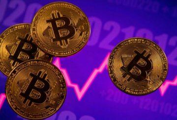 Los jóvenes inversores del Reino Unido eligen las criptomonedas en lugar de las acciones: encuesta