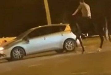 Usuario de TikTok captura el momento en que un automóvil y un caballo chocan en la calle Bankstown