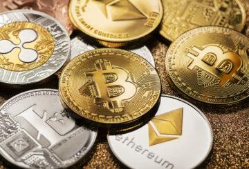 El dominio de Bitcoin aumenta al 50%: ¿es malo para la industria?