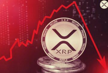 ¿Prohibir Bitcoin?  En absoluto, excluye al co-creador de XRP