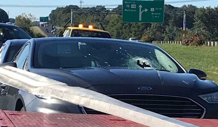 Hombre muerto cuando escombros perforan el parabrisas en un extraño accidente en la carretera