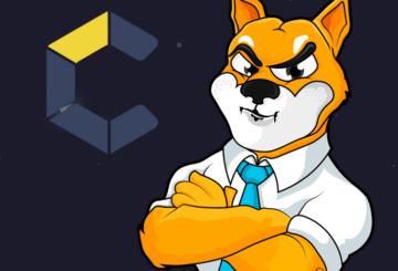 ¿Cómo superará el precio de Shiba Inu al de Dogecoin?
